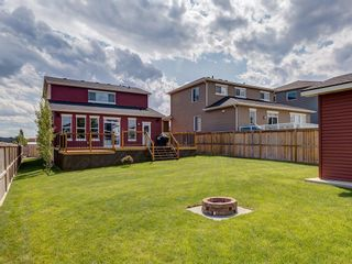 Photo 43: 100 WEST CREEK Green: Chestermere Detached for sale : MLS®# C4261237