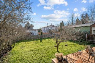 Photo 19: 3516 Calumet Ave in Saanich: SE Quadra House for sale (Saanich East)  : MLS®# 870944