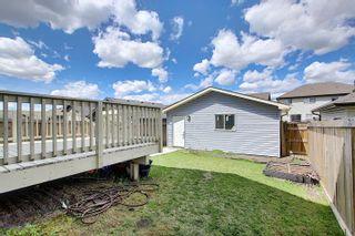 Photo 41: 2918 21A Avenue in Edmonton: Zone 30 House for sale : MLS®# E4247386