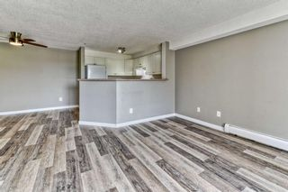 Photo 12: 337 1717 60 Street SE in Calgary: Red Carpet Apartment for sale : MLS®# A1067174