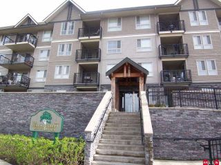 "Photo 1: 104 9000 BIRCH Street in Chilliwack: Chilliwack W Young-Well Condo for sale in ""THE BIRCH"" : MLS®# H1001093"