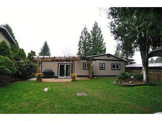 Photo 14: 21161 122ND Avenue in Maple Ridge: Northwest Maple Ridge House for sale : MLS®# V1054323