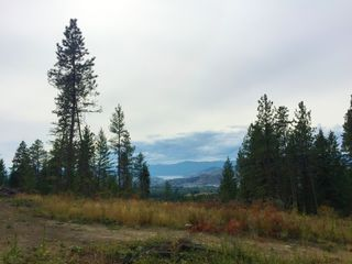 Photo 2: 6575 Dixon Dam Road in Vernon: South BX Vacant Land for sale (North Okanagan)  : MLS®# 10106215