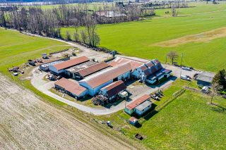 Photo 14: 40628 LOUGHEED Highway in Mission: Dewdney Deroche Agri-Business for sale : MLS®# C8037146