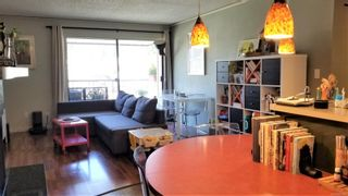 Photo 4: 308 585 S Dogwood St in Campbell River: CR Campbell River Central Condo for sale : MLS®# 881692