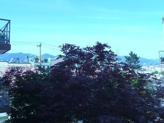 """Photo 15: 203 910 W 8TH Avenue in Vancouver: Fairview VW Condo for sale in """"THE RHAPSODY"""" (Vancouver West)  : MLS®# V765056"""