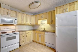 Photo 16: 404 1540 29 Street NW in Calgary: St Andrews Heights Apartment for sale : MLS®# C4281452