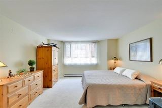 """Photo 15: 104 15111 RUSSELL Avenue: White Rock Condo for sale in """"Pacific Terrace"""" (South Surrey White Rock)  : MLS®# R2594062"""