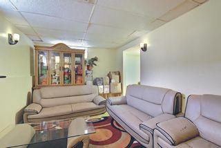 Photo 27: 180 Castledale Way NE in Calgary: Castleridge Detached for sale : MLS®# A1135509