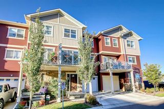 Photo 4: 208 Skyview Ranch Grove NE in Calgary: Skyview Ranch Row/Townhouse for sale : MLS®# A1151086