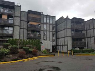"""Photo 1: 317 9672 134TH Street in Surrey: Whalley Condo for sale in """"parkwoods"""" (North Surrey)  : MLS®# R2233640"""