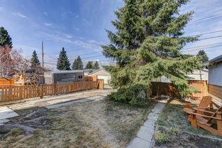 Photo 8: 64 Canyon Drive NW in Calgary: Collingwood Detached for sale : MLS®# A1091957