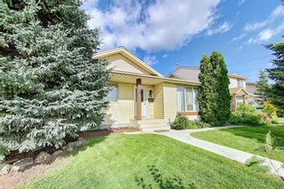 Photo 50: 19 TEMPLEBY Road NE in Calgary: Temple Residential for sale : MLS®# A1027919