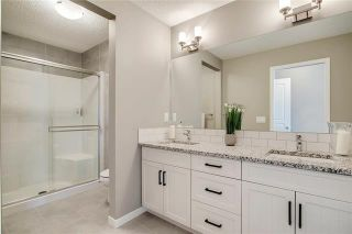 Photo 20: 393 MASTERS Avenue SE in Calgary: Mahogany Detached for sale : MLS®# C4302572