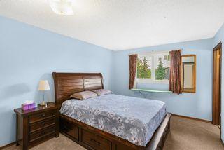 Photo 16: 4 Castlebury Way NE in Calgary: Castleridge Detached for sale : MLS®# A1146595