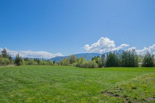 Photo 101: 341 Southwest 60 Street in Salmon Arm: GLENEDEN House for sale (SW Salmon Arm)  : MLS®# 10157771