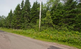 Photo 3: Lot Green Road: Westcock Vacant Land for sale (Sackville)  : MLS®# M106566