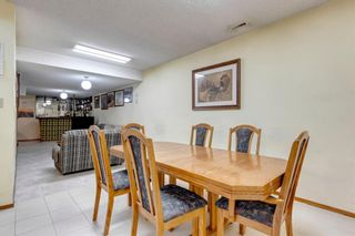 Photo 28: 147 Templevale Place NE in Calgary: Temple Detached for sale : MLS®# A1144568