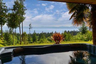 Photo 5: 2203 PIXTON Road: Roberts Creek House for sale (Sunshine Coast)  : MLS®# R2588736