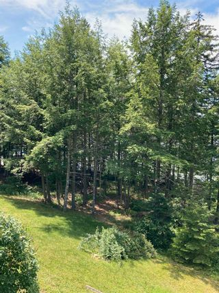 Photo 20: 407 Langille Lake Road in Blockhouse: 405-Lunenburg County Residential for sale (South Shore)  : MLS®# 202117816