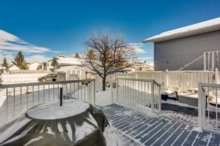Photo 15: 100 Martinwood Road NE in Calgary: Martindale Detached for sale : MLS®# A1071596
