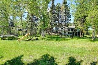 Photo 47: 97 Bearspaw Meadows Way NW in Rural Rocky View County: Rural Rocky View MD Detached for sale : MLS®# A1149296