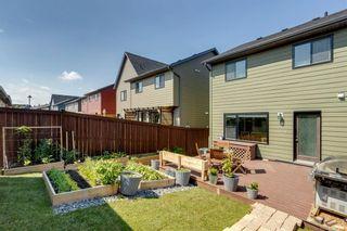 Photo 36: 69 Walden Drive SE in Calgary: Walden Semi Detached for sale : MLS®# A1127735
