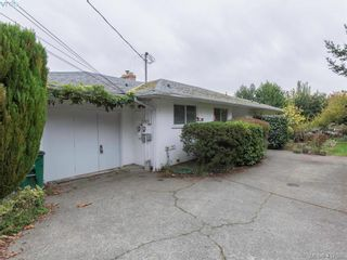 Photo 14: 3985 Hollydene Pl in VICTORIA: SE Arbutus House for sale (Saanich East)  : MLS®# 827429