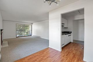 Photo 7: 201 585 Dogwood St in : CR Campbell River Central Condo for sale (Campbell River)  : MLS®# 879500