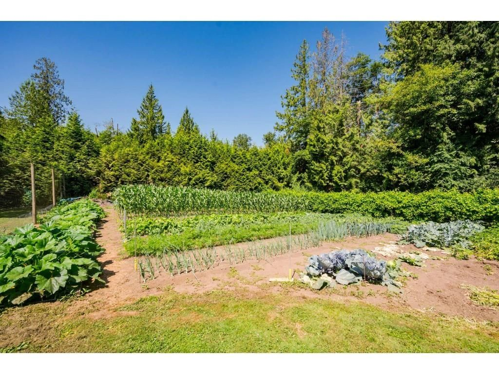 Photo 34: Photos: 26019 58 Avenue in Langley: County Line Glen Valley House for sale : MLS®# R2599684