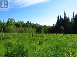 Photo 4: 211 MADILL Road in Katrine: Vacant Land for sale : MLS®# 40131216
