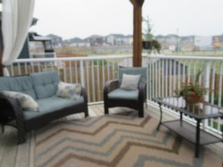 Photo 41: 1447 Aldrich Place: Carstairs Detached for sale : MLS®# A1130977