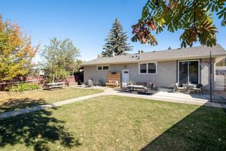 Photo 36: 279 Lynnwood Way NW in Edmonton: Zone 22 House for sale : MLS®# E4265521