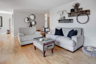 Photo 8: 1013 8604 48 Avenue NW in Calgary: Bowness Apartment for sale : MLS®# A1107613