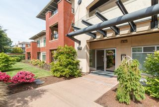 Photo 2: 104 2380 Brethour Ave in SIDNEY: Si Sidney North-East Condo for sale (Sidney)  : MLS®# 786586