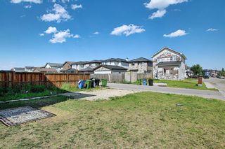 Photo 45: 311 TARALAKE Terrace NE in Calgary: Taradale Detached for sale : MLS®# A1128054