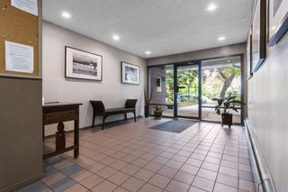 """Photo 19: 203 1484 CHARLES Street in Vancouver: Grandview Woodland Condo for sale in """"LANDMARK ARMS"""" (Vancouver East)  : MLS®# R2613737"""