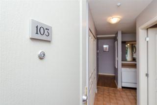 Photo 3: 103 2268 W 12TH AVENUE in Vancouver: Kitsilano Condo for sale (Vancouver West)  : MLS®# R2134816