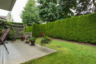 """Photo 38: 31 15450 ROSEMARY HEIGHTS Crescent in Surrey: Morgan Creek Townhouse for sale in """"CARRINGTON"""" (South Surrey White Rock)  : MLS®# R2089379"""