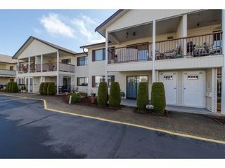 """Photo 1: 49 32959 GEORGE FERGUSON Way in Abbotsford: Central Abbotsford Townhouse for sale in """"Oakhurst"""" : MLS®# R2252811"""