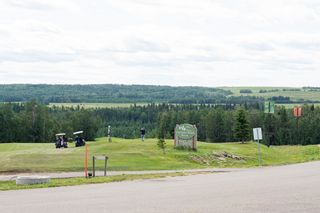 Photo 6: 86 454029 RGE RD 11: Rural Wetaskiwin County Rural Land/Vacant Lot for sale : MLS®# E4258383
