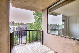 Photo 11: 302 2316 17B Street SW in Calgary: Bankview Apartment for sale : MLS®# A1147214