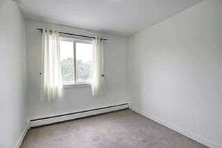 Photo 19: 303 4455A Greenview Drive NE in Calgary: Greenview Apartment for sale : MLS®# A1108022