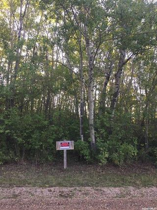 Photo 20: 5/6 Rural Address in Wakaw Lake: Residential for sale : MLS®# SK863512