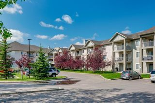 Photo 31: 107 3000 Citadel Meadow Point NW in Calgary: Citadel Apartment for sale : MLS®# A1070603
