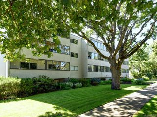 Photo 18: 205 2610 Graham St in Victoria: Vi Hillside Condo for sale : MLS®# 842401