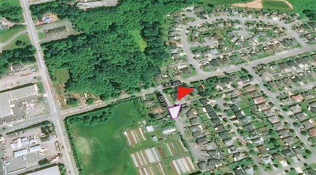 Photo 12: Photos: 8388 133 Street in SURREY: Queen Mary Park Surrey Land for sale (Surrey)  : MLS®# R2412703