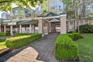 Photo 20: 217 12155 191B STREET in Pitt Meadows: Central Meadows Condo for sale : MLS®# R2491895