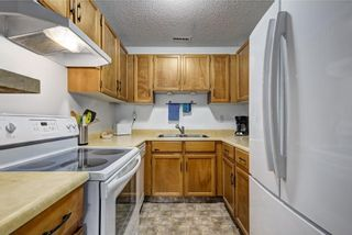 Photo 9: 104 420 GRIER Avenue NE in Calgary: Greenview House for sale