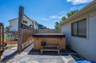 Photo 21: 45 Aberdare Road NE in Calgary: Abbeydale Detached for sale : MLS®# A1110096